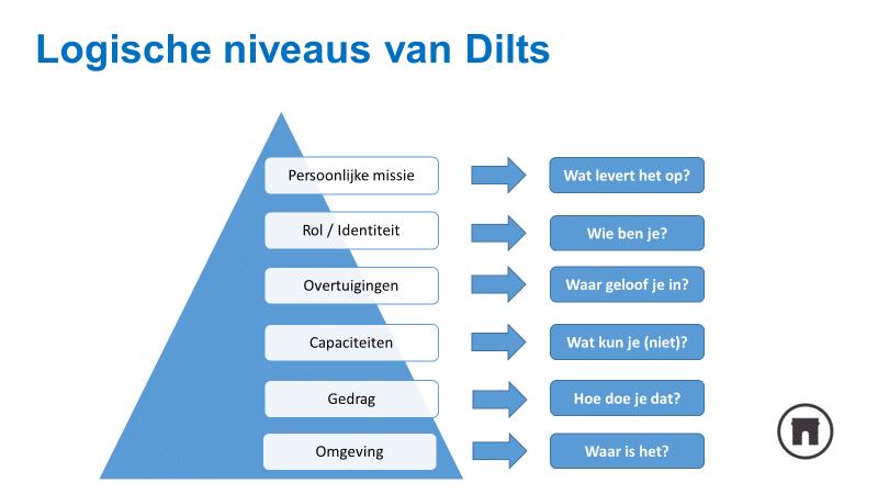 logische niveaus van dilts